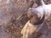 Brunnenbau von Hand